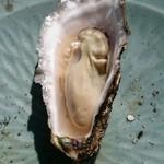 中山牡蠣養殖所 - 本日の中では小振りな牡蠣で大きいのはこの1.5倍