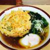 そばの神田 - 料理写真:朝そば(300円)、野菜かき揚げ(80円)