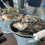 草津かき小屋 - バケツ牡蠣