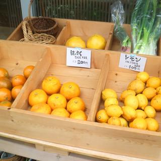 水曜日の夕方は、オーガニック野菜を販売
