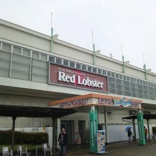 名古屋港水族館の目の前!