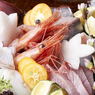 三浦より届く新鮮な魚たち