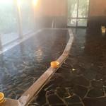 星野温泉 池の山荘 - 大浴場