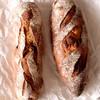 季節の酵母パン punch - 料理写真: