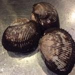 山口県産 赤貝