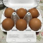 卵卵ひろば -