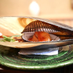 緒方 - 赤貝(山口)、本ミル貝、平貝