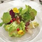 ビストロ イブー - 海鮮サラダ
