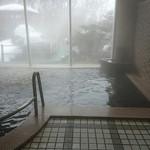 竹山高原ホテル - 内風呂
