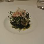 リストランテ カノフィーロ - イワシのポルペッタとカーボロネロ