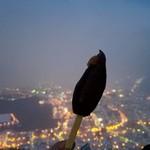 函館山展望台 山頂ショップ - 函館の夜景をバックに「いかめし棒 (300円)」