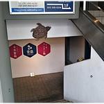 ウミガメ食堂 - 階段から見下ろし。