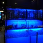 33區熱炒生猛海鮮 - 水槽ではカニエビが泳いでいます