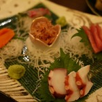 桃源郷 - 刺盛りー