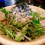 焼肉 やまと - 「釜あげしらすの和サラダ」(580円)。