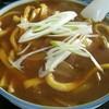 榮ちゃん食堂 - 料理写真:カレーうどん 大盛