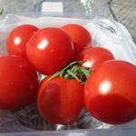 シャーレ水ヶ浜 - 酸味少なくジューシーなトマトでした