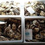 飛梅 - かき小屋 飛梅 神田西口店 出番を待つ三陸沖産殻付き牡蛎さんたち