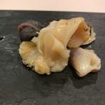 64153900 - 貝のお刺身 つぶ貝 北寄貝 鮑