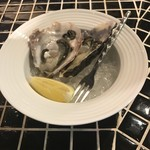 64214660 - ファームスズキの生牡蠣 一個150円