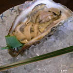 千松しま - 殻を外すと牡蠣の身が…