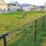 ビクトリー - 緑が綺麗な屋外ドッグラン(手前大・中型犬用、奥が小型犬用)