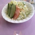 ムガルパレス - セットのサラダ