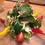 64613767 - 彩り野菜サラダ