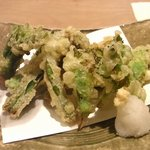 6462516 - 春野菜の天ぷら