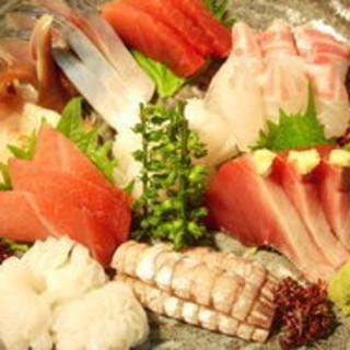 魚食を極める料理と接待・御会食