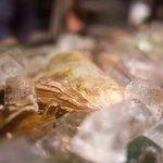 海鮮心あきやま - 料理写真:海鮮心あきやま 牡蠣