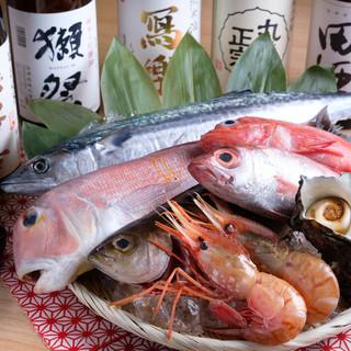 漁師さん直送のこだわりの海鮮を是非ご堪能下さい!