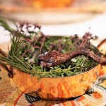 イレテテュヌフワ - ラカン産鳩のもも肉の赤ワインのマリネ、炭火焼き