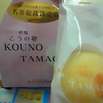 KATASHIMA - こうの卵