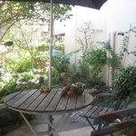 サレペペ - お庭