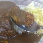 カレーハウスデリー - 揚げたて熱々!