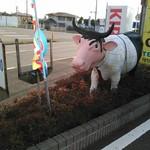 64835321 - 太い眉毛な牛