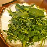 小尾羊  - パクチー・空芯菜・豆苗の盛り合わせ