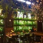 青山フラワーマーケット ティーハウス - 店内は一面、植物で囲まれています。