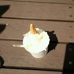 ジェラティリア ココ - 豆乳ジェラート
