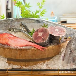 沼津港からすぐ、毎朝市場から駿河湾をはじめとした魚介を厳選
