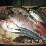 千石寿司 - 色々な食材