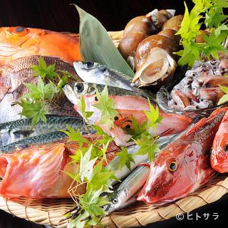富山湾から直送の鮮魚と地元の新鮮野菜