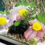海坊主 - 刺し盛り(鮮度で選ぶ日替わり)