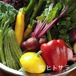 トラットリア マリー - 新鮮な野菜と鮮魚がたっぷり!