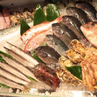 魚屋が毎日仕入れる新鮮な魚介は掛け値なし旨い!
