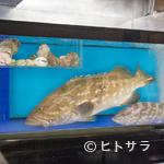 桃兵衛 - 天然のクエ、島根県・浜田産のどぐろなど、食材に妥協なし