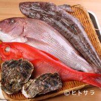酒蔵 ひなよし - 季節の近海地魚等、日替り海替りの料理あり。