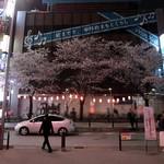 天馬 - (参考画像)中野駅北口の桜