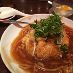 65191426 - 上海湯包小館・九条ネギの肉あんかけ炒飯
